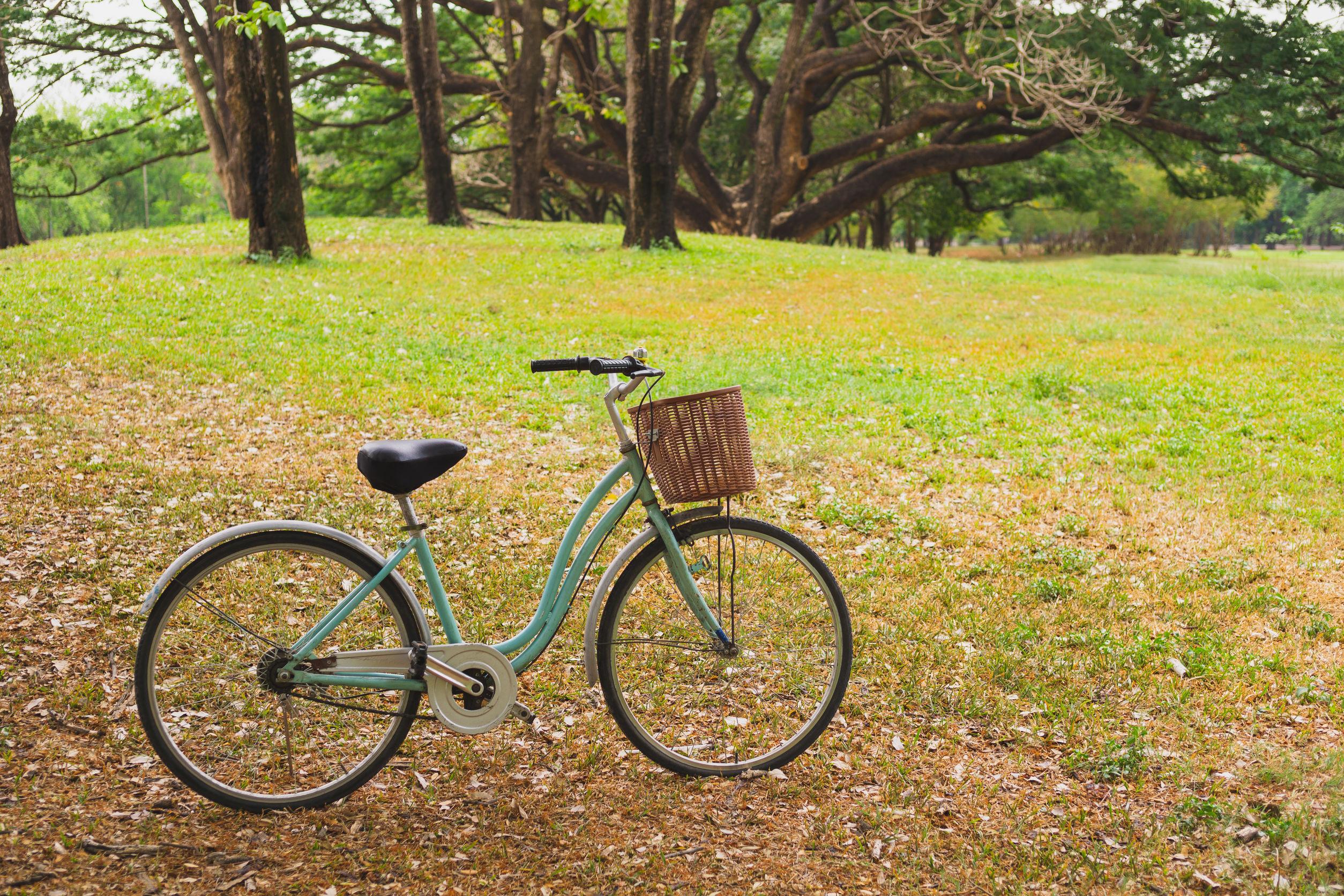 Hermosa bicicleta vintage en el parque