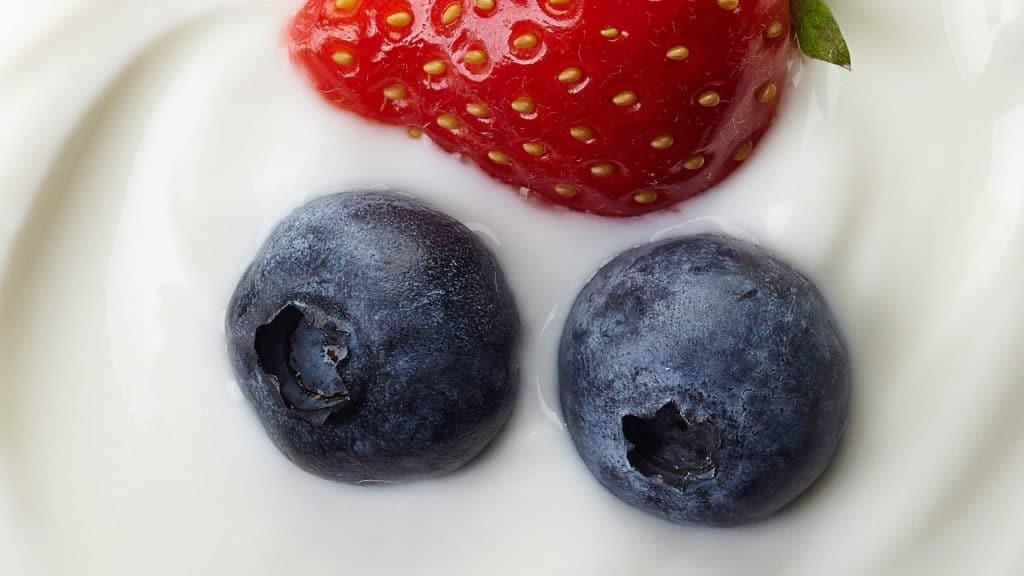 alimentos yogurt