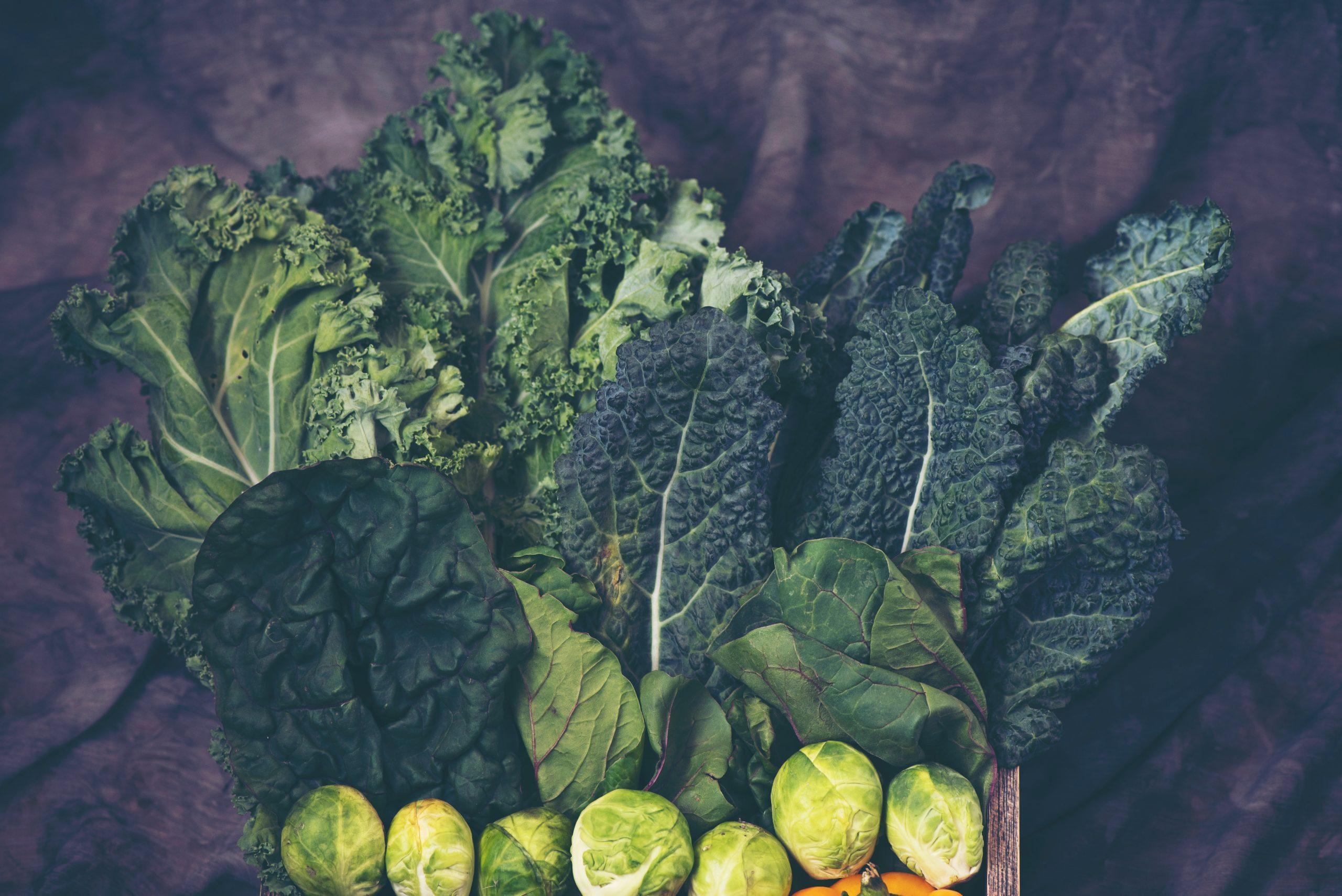 Variedad de verduras verde