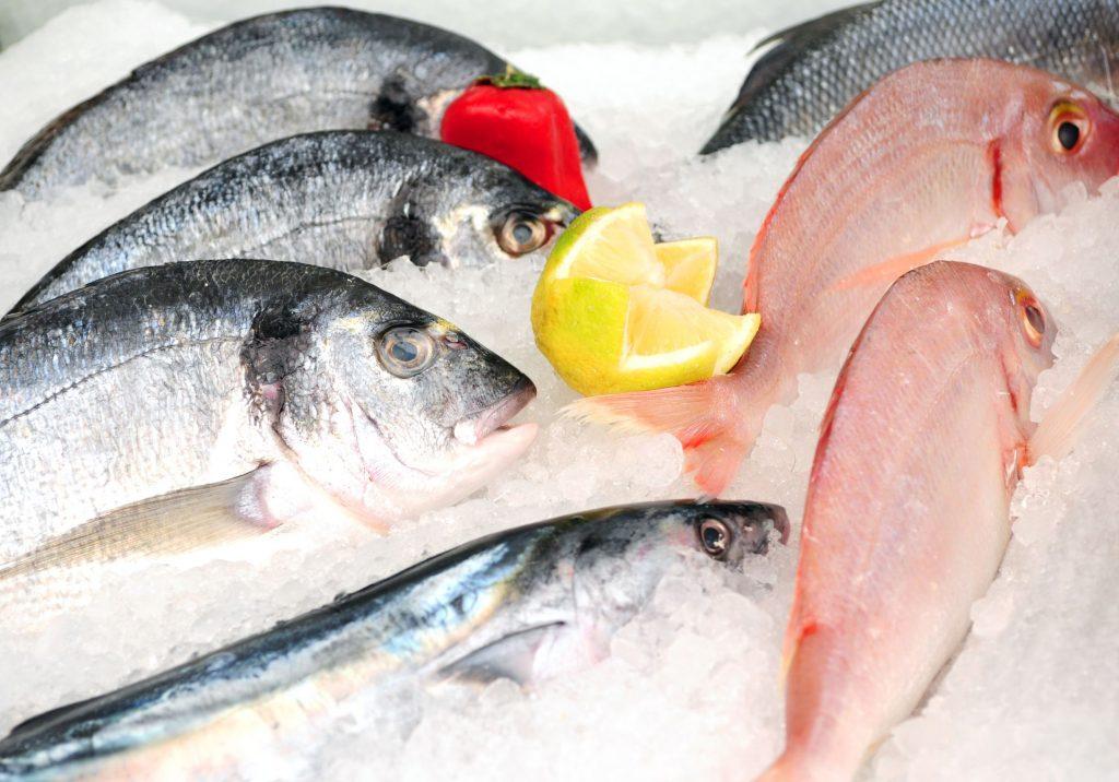 Pescado fresco fotografiado en el mercado