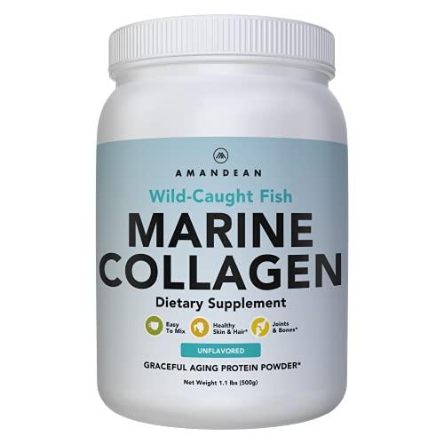 Polvo de colágeno marino antienvejecimiento premium 17.5 oz | Péptidos de colágeno hidrolizado de pescado silvestre | Suplemento de proteína de colágeno tipo 1 y 3 | Aminoácidos para la piel, el cabello y las uñas | Paleo Friendly, sin OGM