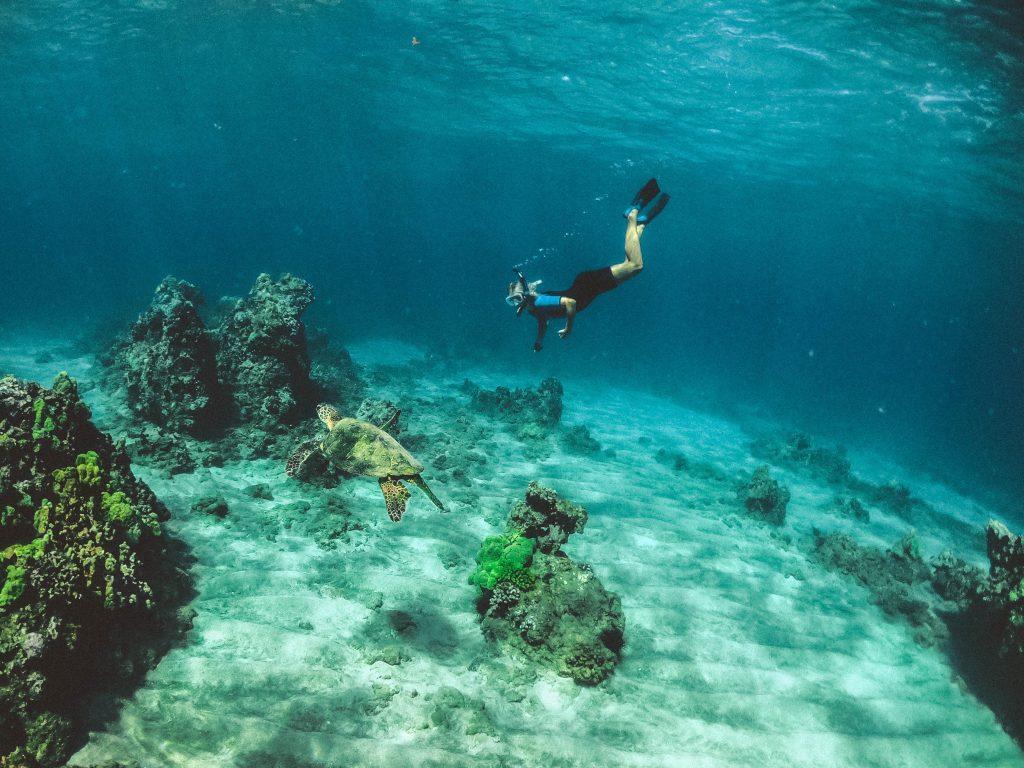 Imagen de buco en el fondo del mar
