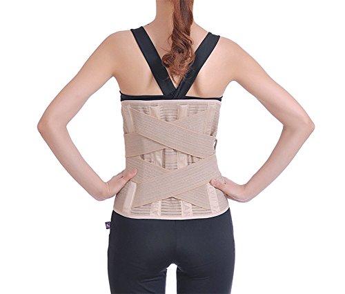 YZAM Soporte Lumbar Doble Ajustable Cinturón Lumbar para Terapia De Postura Faja Lumbar,L